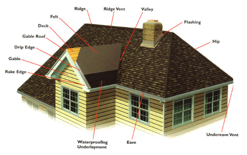 Vancouver Roofing Services